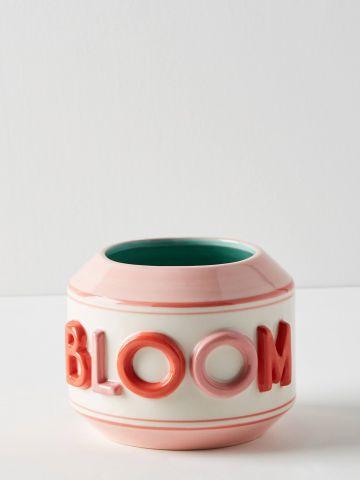 כלי חרס לעציץ Bloom